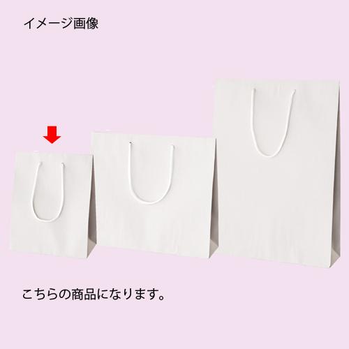 【まとめ買い10個セット品】 カラー手提げ紙袋 ホワイト 20×12×25 10枚【店舗備品 包装紙 ラッピング 袋 ディスプレー店舗】【ECJ】