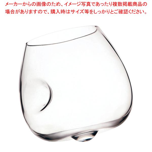 レーマン テイスター450 (6ヶ入) 【ECJ】