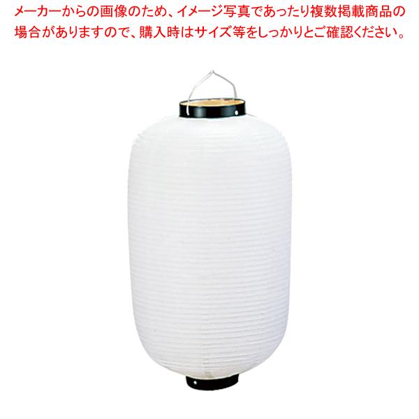 ビニール提灯長型 《30号》 白ベタ b431【 メーカー直送/代引不可 】 【ECJ】