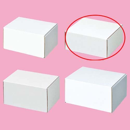 【まとめ買い10個セット品】 フリーボックス 15.5×15.5×6.5 10枚【店舗什器 小物 ディスプレー ギフト ラッピング 包装紙 袋 消耗品 店舗備品】【ECJ】