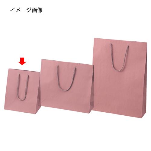 【まとめ買い10個セット品】 カラー手提げ紙袋 あずき 20×12×25 100枚【店舗什器 小物 ディスプレー ギフト ラッピング 包装紙 袋 消耗品 店舗備品】【ECJ】