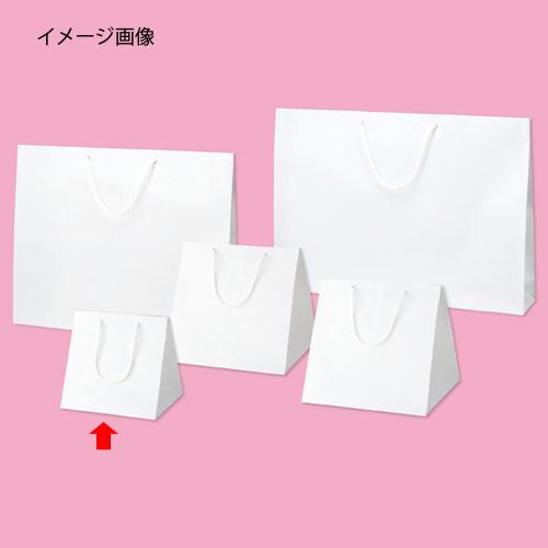 【まとめ買い10個セット品】 ブライトバッグ ホワイト 23×20×23 50枚【店舗什器 小物 ディスプレー ギフト ラッピング 包装紙 袋 消耗品 店舗備品】【ECJ】