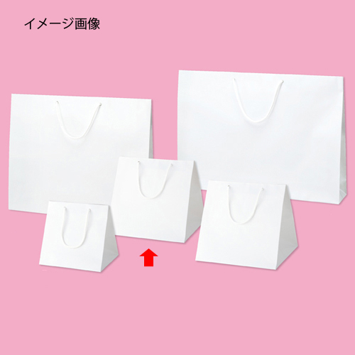 【まとめ買い10個セット品】 ブライトバッグ ホワイト 28×25×28 50枚【店舗什器 小物 ディスプレー ギフト ラッピング 包装紙 袋 消耗品 店舗備品】【ECJ】