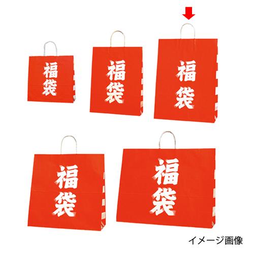 【まとめ買い10個セット品】 福袋 38×15×50 50枚【店舗什器 小物 ディスプレー 店舗備品】【ECJ】