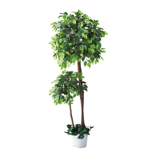 【まとめ買い10個セット品】 ベンジャミンダブル(人工樹木) 1台 【ECJ】