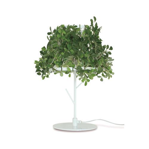 LT3692WH 「Foresti Table Lamp」DI CLASSE ディクラッセ[テーブルスタンド]【送料無料】【LT3692WH】