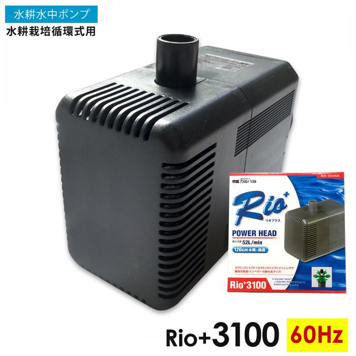 水中ポンプ 水耕栽培 循環式用 Rio+3100 (60Hz) 自作水耕栽培 小~中規模 水耕栽培 システム プラント