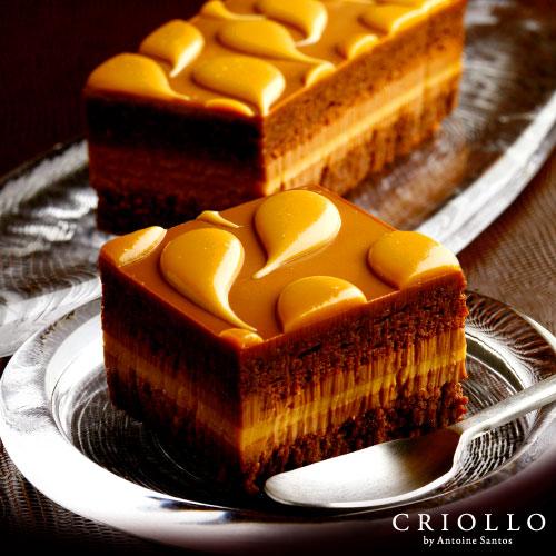 キャラメルとチョコレートの達人が作る究極のケーキ チョコケーキ 通信販売 使い勝手の良い 2021 お取り寄せグルメ お中元 御中元 通販 敬老の日 スイーツ ギフト ショック キャラメル 約2~3名用 あす楽対応 長方形 高級 チョコレート 冷凍便 ブランド チョコレートケーキ