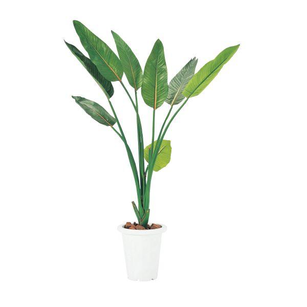 【オフィスグリーン】ストレチア 人工植物 【国産】【G-S】