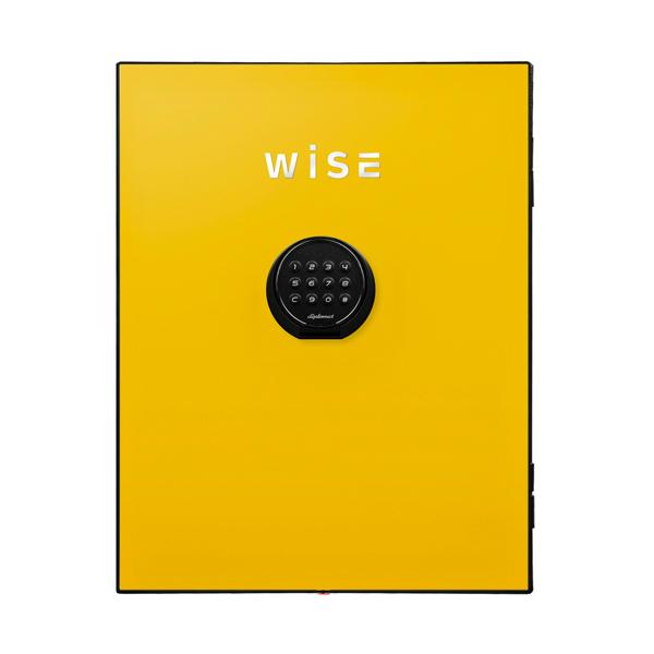 【送料無料】ディプロマット WISEプレミアムセーフフェイスパネル(イエロー) WS500FPY