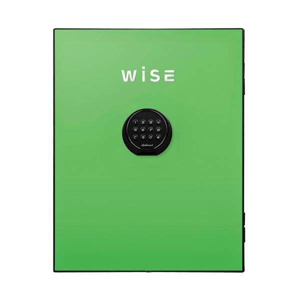 【送料無料】ディプロマット WISEプレミアムセーフフェイスパネル(グリーン) WS500FPG