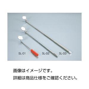 直送・代引不可(まとめ)検査鏡 SL-02【×10セット】別商品の同時注文不可