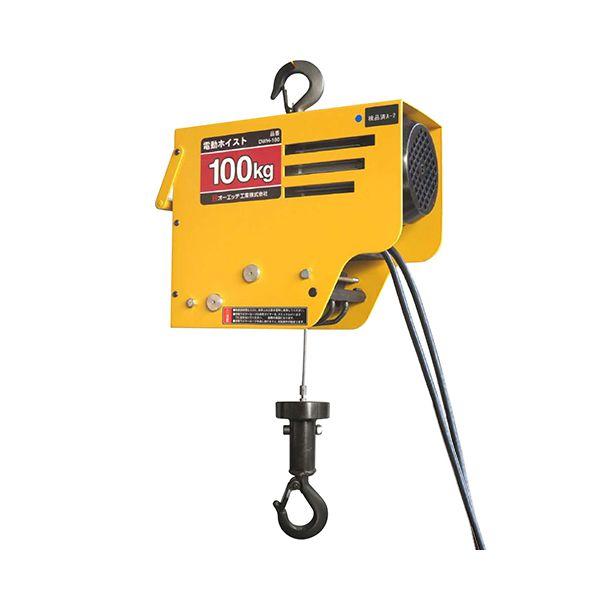4963360506550 OH 電動ワイヤーホイスト100 DWH-100