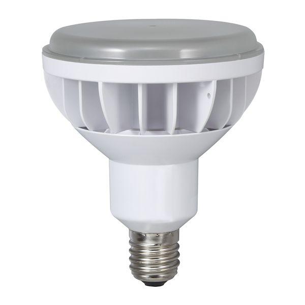 ハタヤリミテッド LDR40N-H110 新着セール 40W LDR40NH110 授与 LED電球