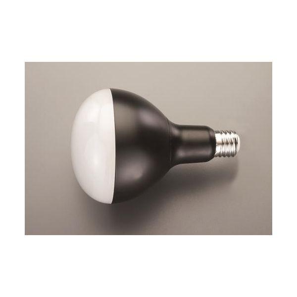 【個人宅配送不可】EA814AR-55 直送 代引不可・他メーカー同梱不可 45W 作業灯用LED球 EA814AR55