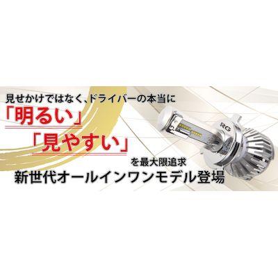 特売 レーシングギア RGH-P774 RG LEDヘッド 上等 RGHP774 H4 5500K