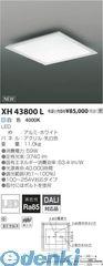 コイズミ照明 [XH43800L] LED直付器具【送料無料】