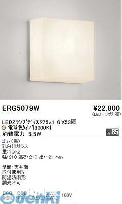 遠藤照明 ERG5079W アウトドアブラケット/防雨形/Disk75【送料無料】
