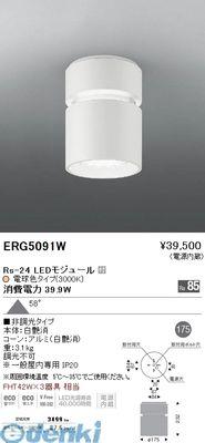 遠藤照明 [ERG5091W] シーリングダウンライト/ベース/LED3000K/Rs24【送料無料】