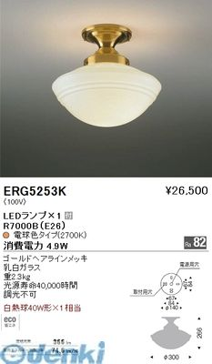 遠藤照明 ERG5253K シーリング【送料無料】