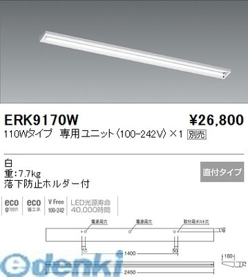 遠藤照明 ERK9170W 直付/ウォールウォッシャー/110W/1灯【送料無料】
