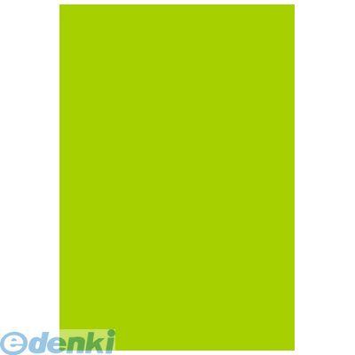 ササガワ タカ印 31-307 【5個入】 B3いろ紙 黄緑 31307