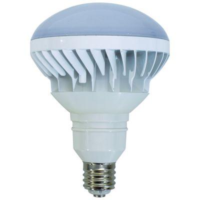 日動 L40V2-J110-50K LED交換球 ハイスペックエコビック40W E39 昼白色 本体白L40V2J11050K