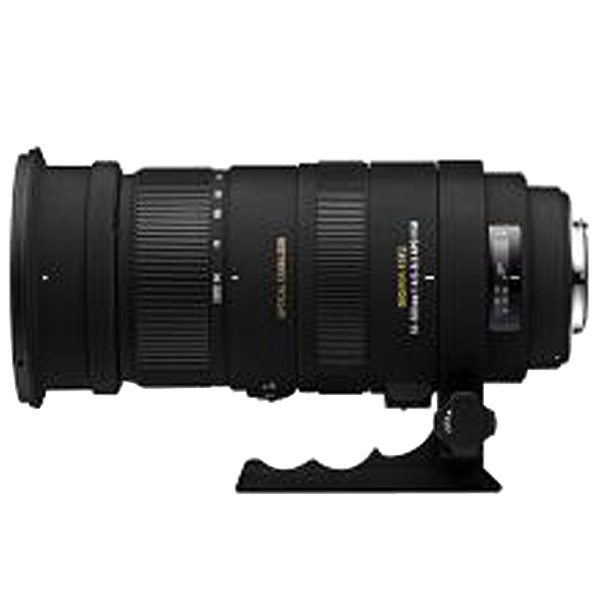 シグマ 望遠ズームレンズ(キヤノン用) APO 50-500mm F4.5-6.3 DG OS HSM APO50-500MMF4.5-6.3DGOSHS [S738549]