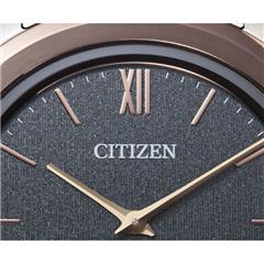 シチズン 腕時計 エコ・ドライブ ワン AR5004-59H [AR500459H]