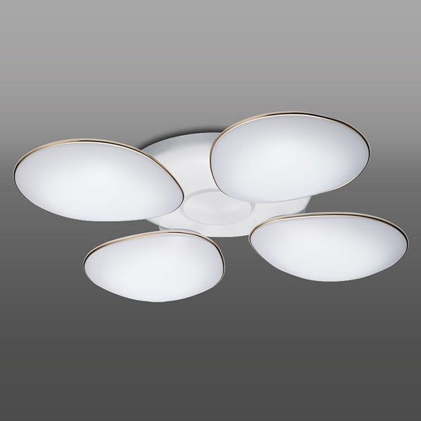 タキズミ LEDシャンデリア RCH40015D [RCH40015D]