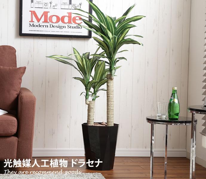 【高さ1.1m】 Dracaena ドラセナ 人工植物 観葉植物 お手入れ不要 リアル グリーン 水やり不要 光触媒 おしゃれ家具 おしゃれ 北欧 モダン