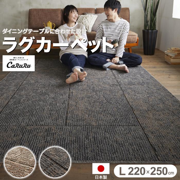 【送料無料】ラグ カーペット 220×250cm カルル DKラスティー防ダニ 日本製 丸洗いOK ウォッシャブル 滑り止め 床暖対応