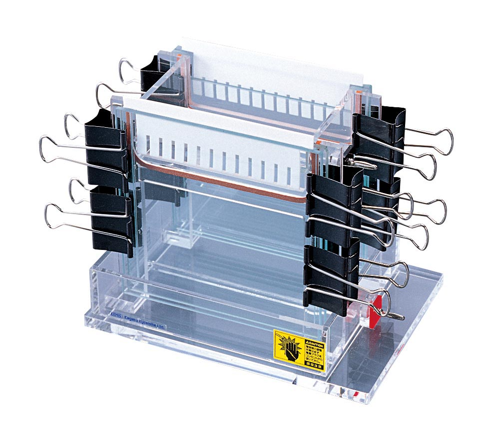 ケニス 垂直型電気泳動装置 CM-1005(二連式)