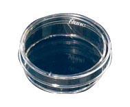 サーモフィッシャーサイエンティフィック 細胞培養ペトリディッシュ 153066