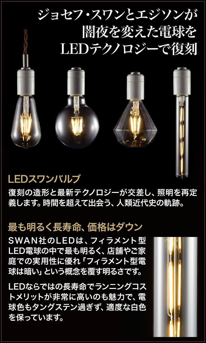 只 LED 天鹅阀球 LED 灯泡天鹅电灯白炽灯泡的凉风。
