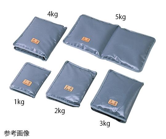 アズワン 砂袋 病室用 5kg 280×500 グレー (0-620-10)