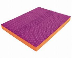 (キャッシュレス還元 5%対象)モビマットDVD付 Easy(硬め) / MAT001 ピンク×オレンジ エフアシスト 介護用品