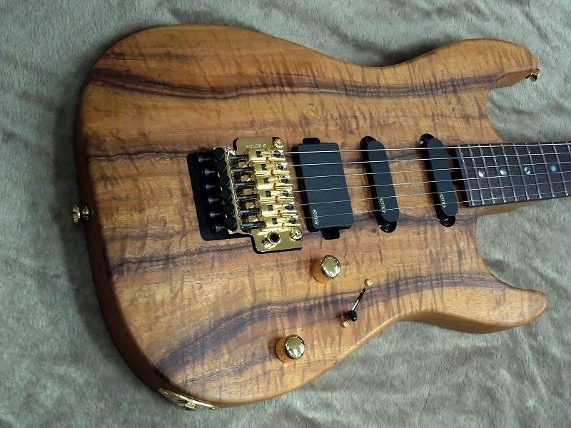 T's Guitars DST-22 Custom 【当店カスタムオーダーモデル】【国産ハイエンド】【ティーズ】【コアトップ】