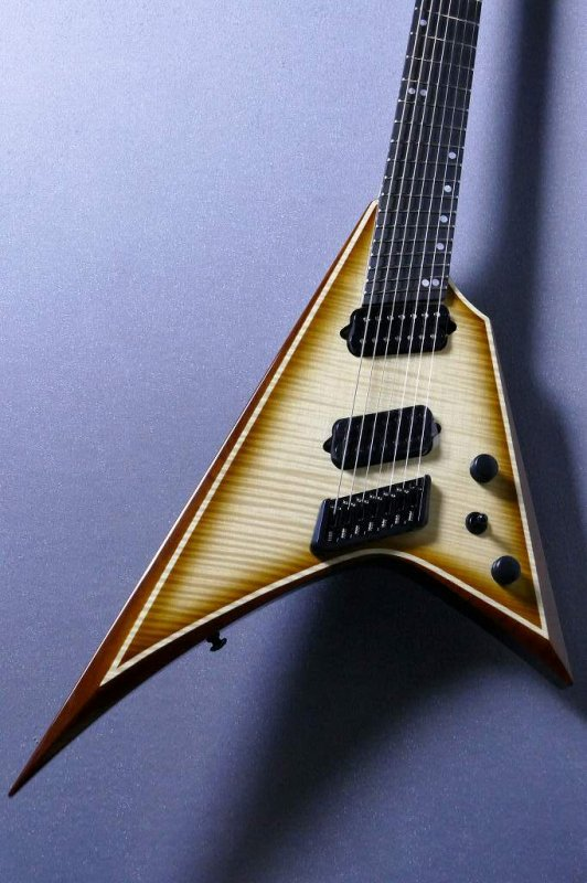 Ormsby Guitars METAL V GTR 7MS IT Flame Top Exotic 【7弦】超人気モデル【オームズビー】【メタルV】