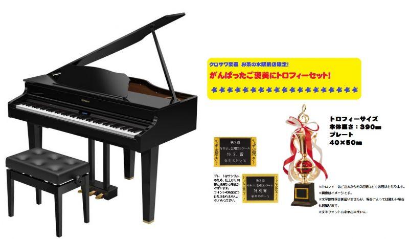 【高低自在椅子&ヘッドフォン付属】Roland ローランド GP607-PES 【デジタルピアノ・電子ピアノ】【がんばったご褒美にトロフィーセット!】【配送設置料無料】