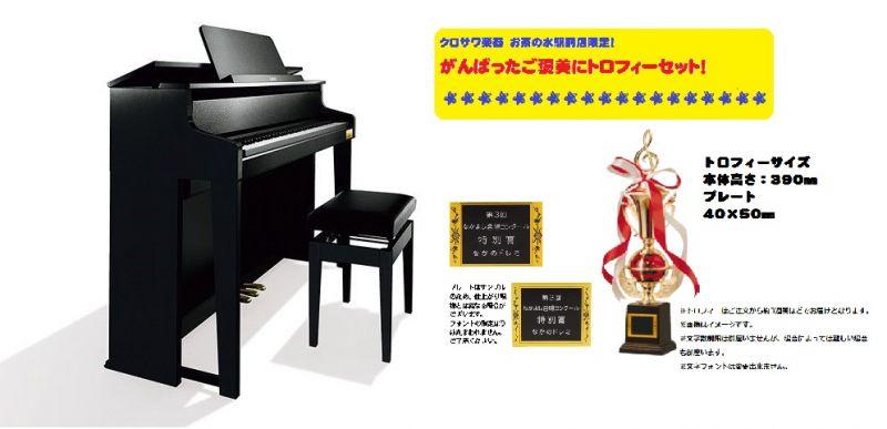 【高低自在イス付属】CASIO カシオ GP-300BK 【CELVIANO Grand Hybrid】【電子ピアノ・デジタルピアノ】【ハイブリッドピアノ】【がんばったご褒美にトロフィーセット!】【送料無料】