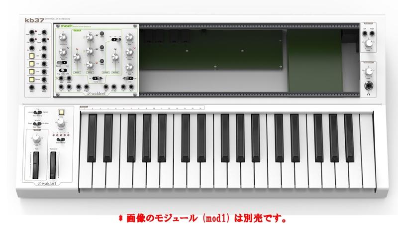 Waldorfkb37【MIDIコントローラー・CVコントローラー】【送料無料】