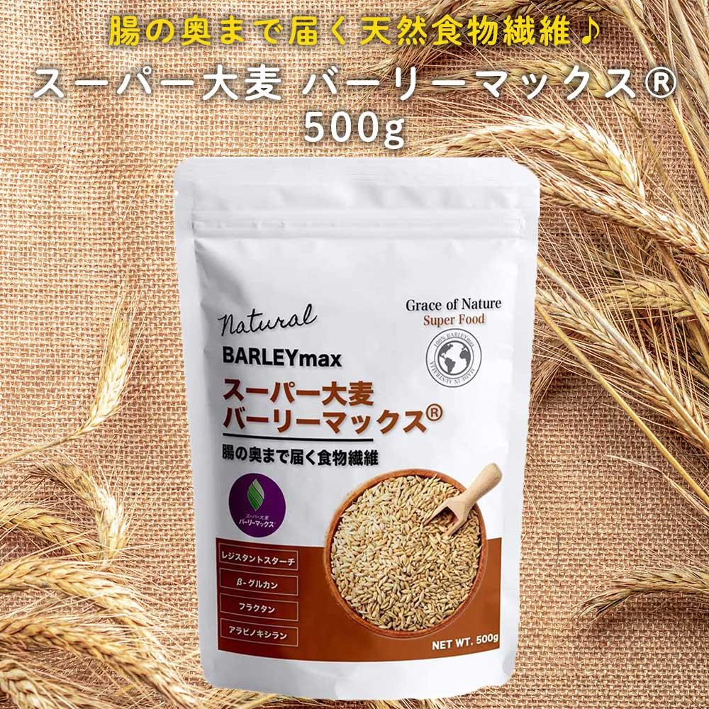 スーパー大麦 バーリーマックス レジスタントスターチ もち麦の2倍の総食物繊維量 直営店 糖質 宅配便送料無料 制限 腸内フローラ オフ ダイエット 500g 大腸 腸活