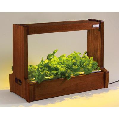 【返品OK!条件付】LED水耕栽培 植物育成器 灯菜(アカリーナ) 野菜 ハーブ お花 オリンピア照明 OMA06BR 【KK9N0D18P】【120サイズ】