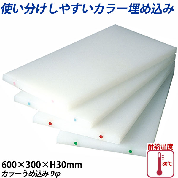 【送料無料】K型カラーうめ込み まな板(両面シボ付) 厚さ30mm K-3(カラーうめ込み9φ)_600×300×H30mm カラーまな板 業務用 給食施設 食品工場