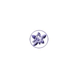 コルテPHI ジェム キット(20本セット) 各15ml 日本国内正規品 【 送料無料 】【 エッセンスキット / コルテPHI エッセンス / コルテPHI / コルテPHI フラワーエッセンス 】, キンタローのウッドクラフト:d0f4b3fd --- artvillage.jp
