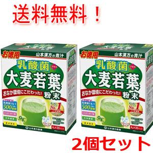 おなか環境にこだわった健康維持をサポート 2個セット 山本漢方製薬 乳酸菌 直送商品 スティックタイプ 激安卸販売新品 大麦若葉 4g×30包
