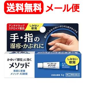 <title>手 指の湿疹 かぶれに 第 2 類医薬品 送料無料 メール便対応 メソッド AS軟膏 6g ラッピング無料</title>