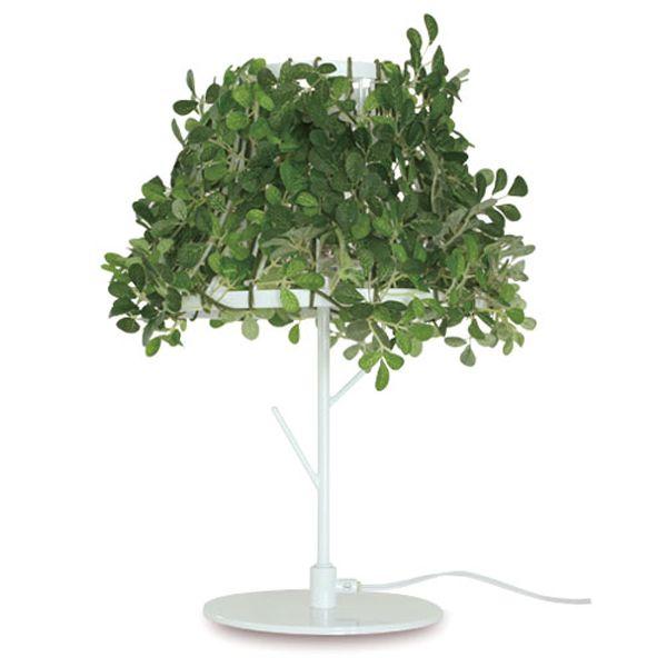 【送料無料】フォレスティ テーブルランプ Foresti table lamp【B】DI CLASSE 北欧【TC】