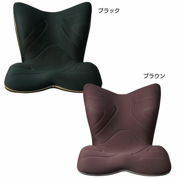 Style PREMIUM BS-PR2004F-N 送料無料 MTG スタイルプレミアム 姿勢ケア 骨盤 腰椎 姿勢改善 歪み座り姿勢 低反発 反発 整体師 デスクワーク 床座り 姿勢矯正 骨盤矯正 腰痛対正 【D】